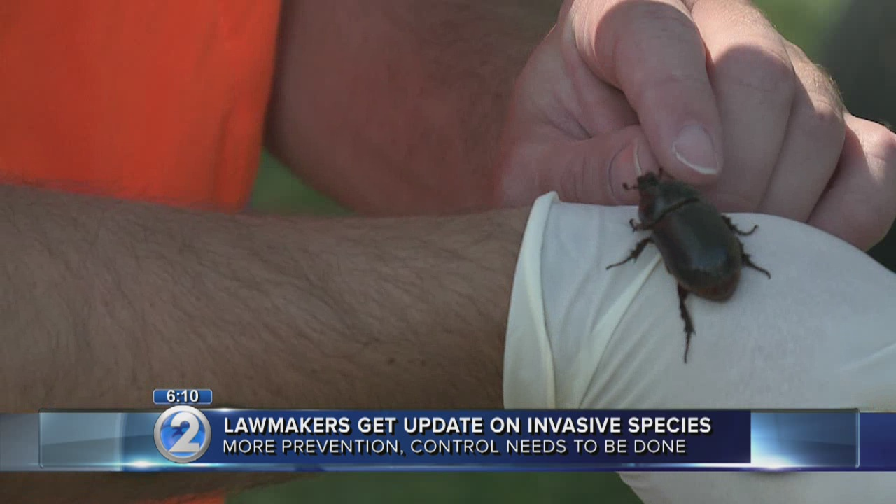 Lawmakers renew fight against invasive species threat