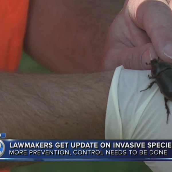Lawmakers renew fight against invasive species threat