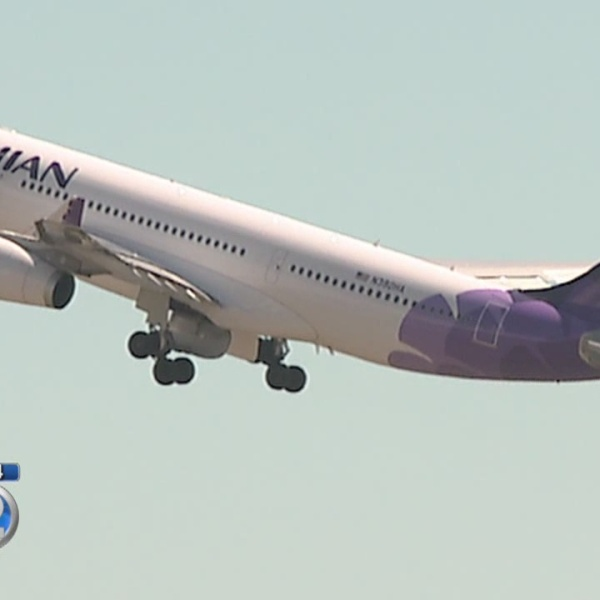 Flight delayed after Hawaiian Airlines plane struck by lightning