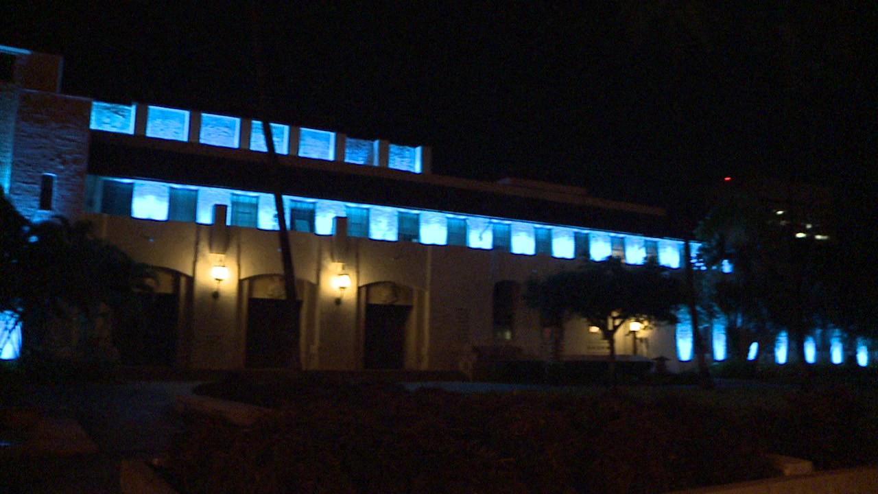 3-9 HONOLULU HALE IN BLUE_82660