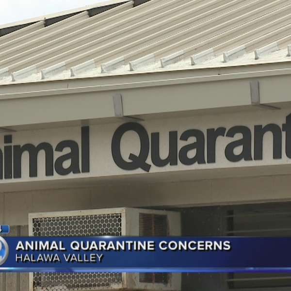 Lawmakers call for audit of animal quarantine station