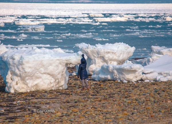human-size-icebergs-in-cape-cod-dapixara_82811