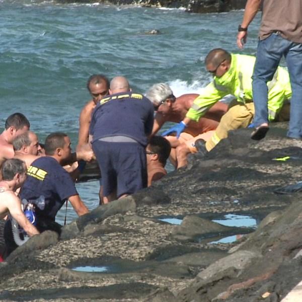 kewalo basin rescue_85392
