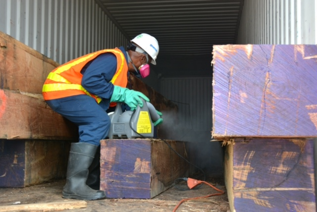 PEARL HARBOR-HICKAM, Hawaii (Feb. 24, 2015) Pest Control personnel from Naval Facilities Engineering Command Hawaii were called out to treat two shipping containers with large oak timbers from Tennessee due to an unidentified ant species that was...