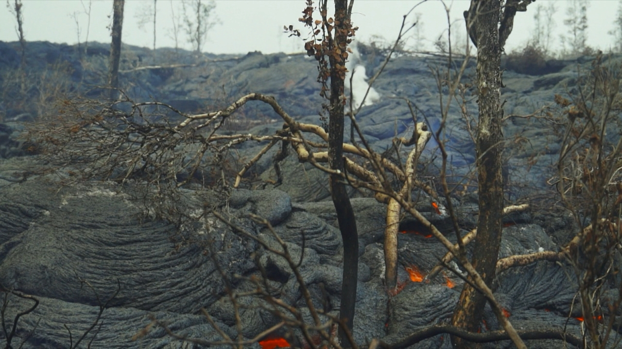 PART 5 FINAL FUTURE lava_83850