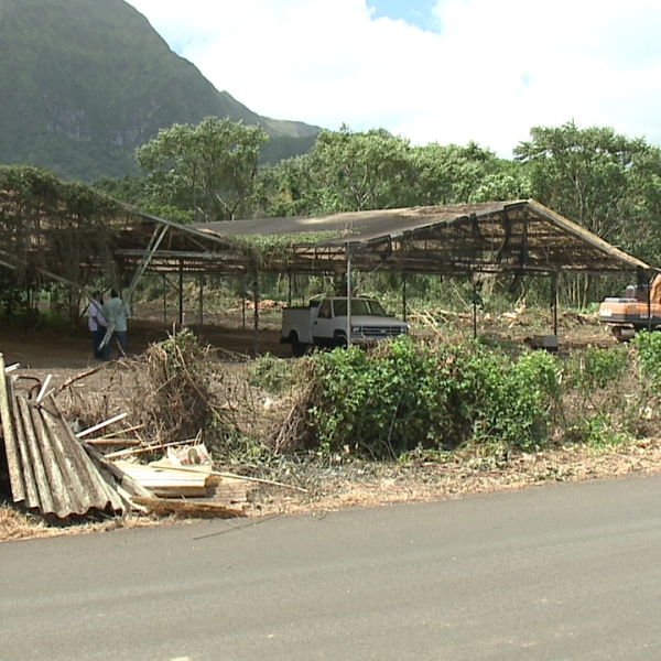 waimanalo property (1)_85861