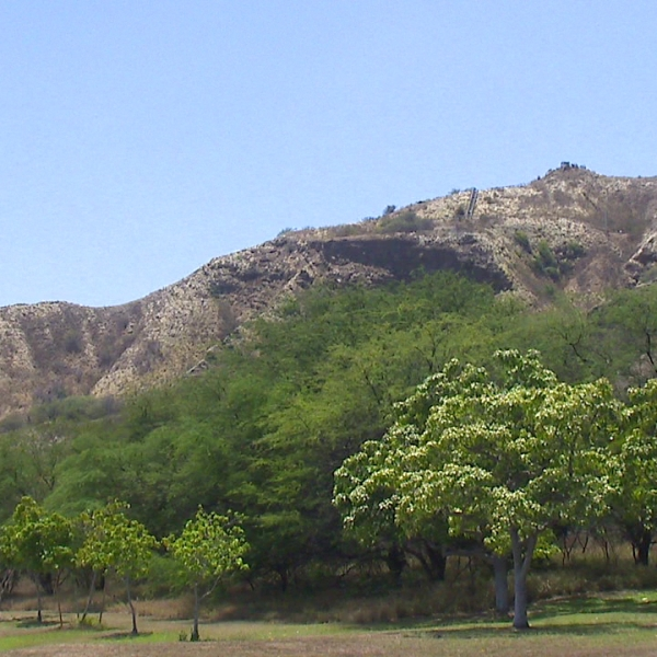 diamond head state monument_88427