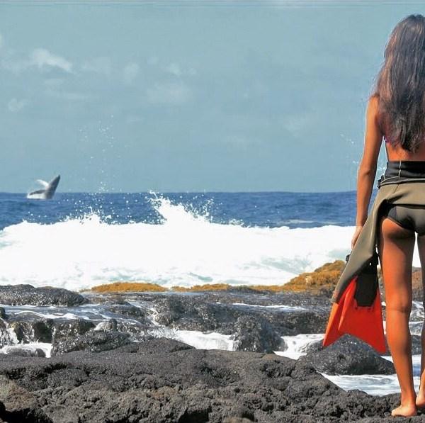 humpback whale christie ramirez_87074