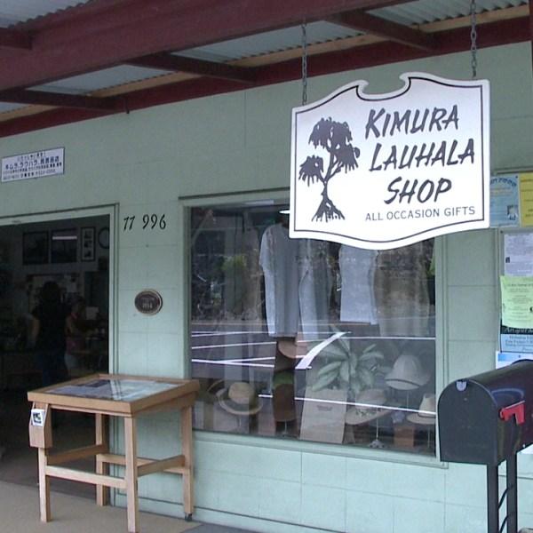 kimura lauhala shop_94674