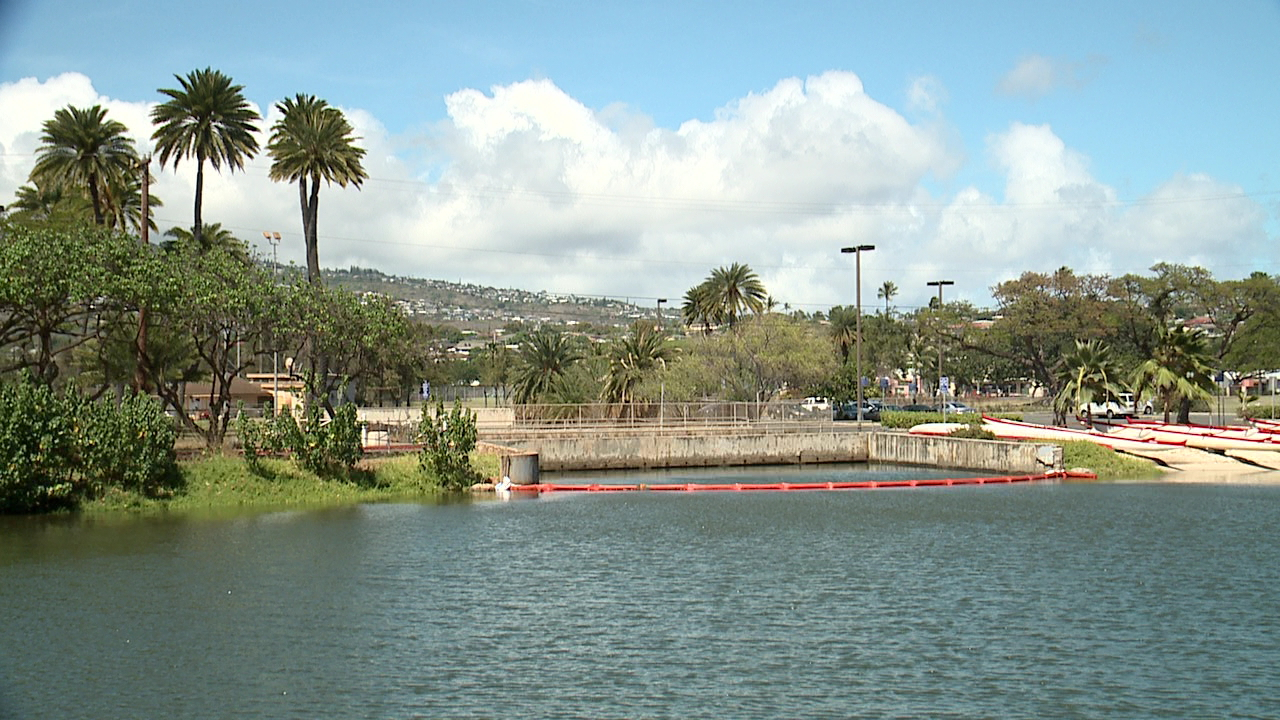 ala wai canal booms_100594