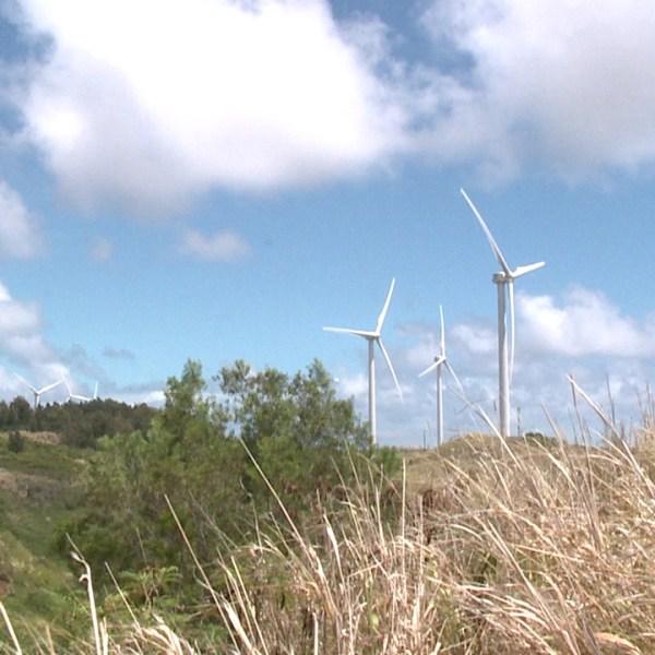 kahuku wind farm_100731