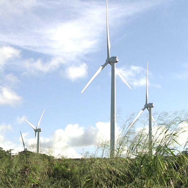kahuku wind farm_98859
