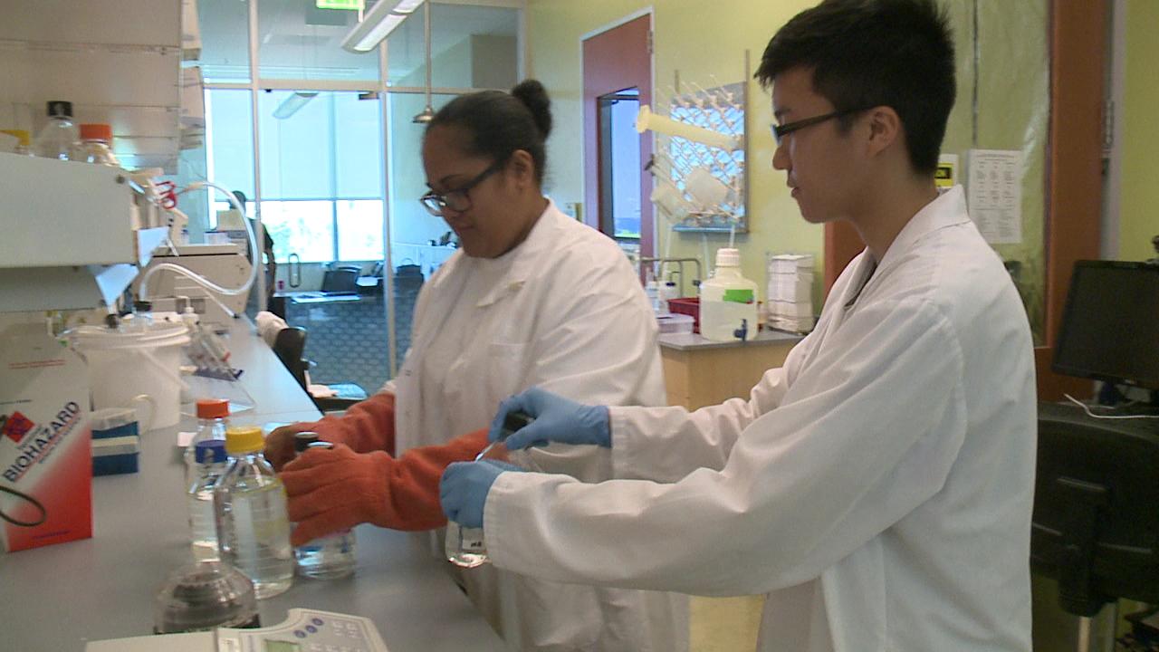 UH cancer center interns_102582