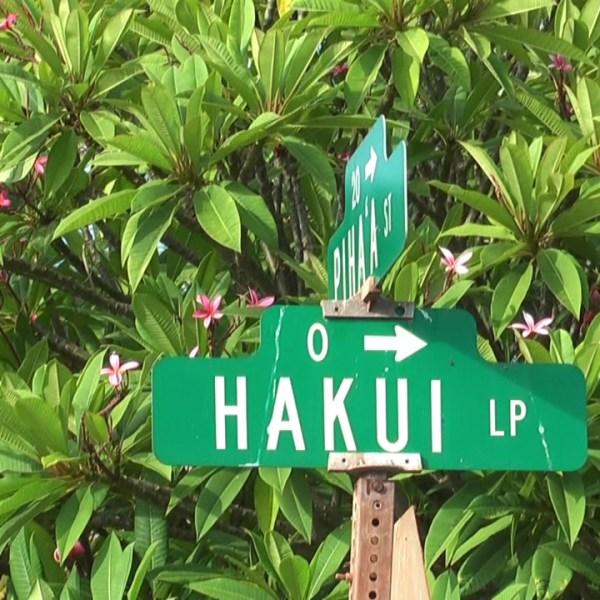 7-21 Hakui Loop_106511