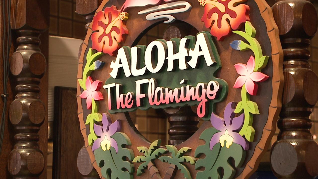 Flamingo Closes_104770