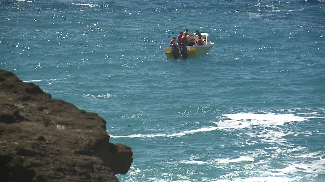 halona blowhole search_107451