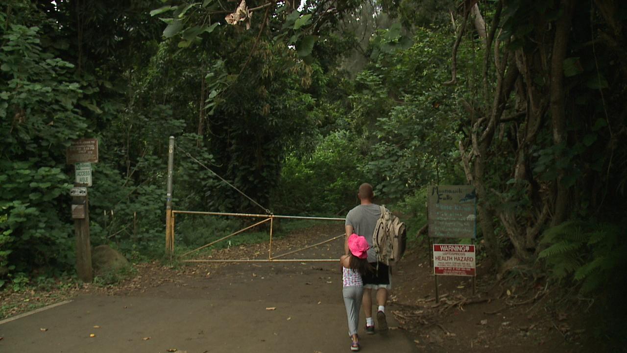 Maunawili Falls_111384