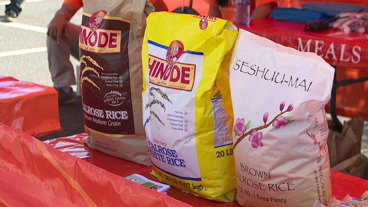 Rice Fest 2015_115992