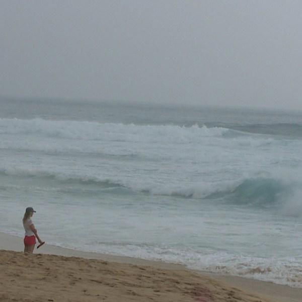 sandy beach surf_116213
