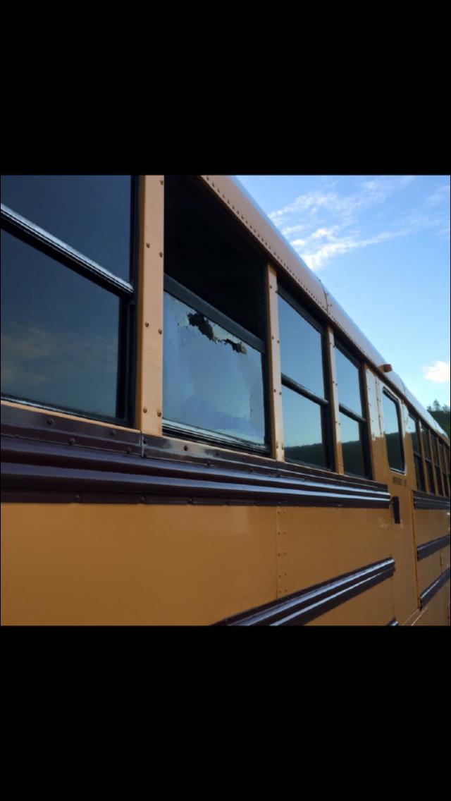 10-20 bus_124534