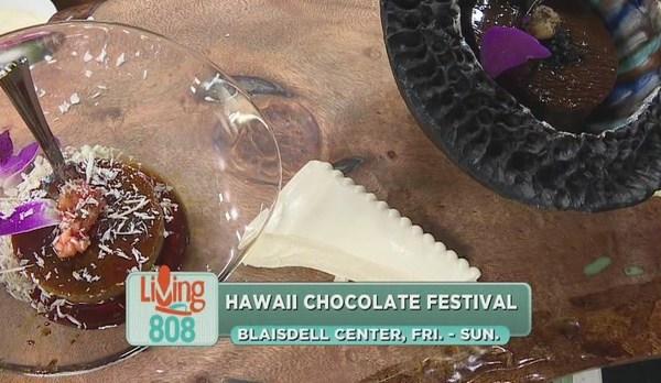 chocolate festival_123380