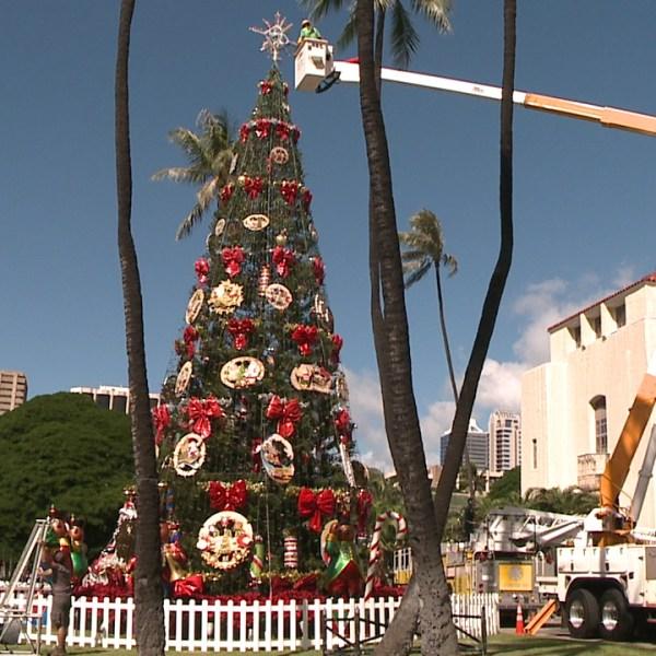 honolulu hale christmas tree top_132333