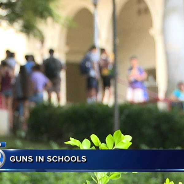 DOE report reveals 21 students caught with firearms, most in elementary, middle schools