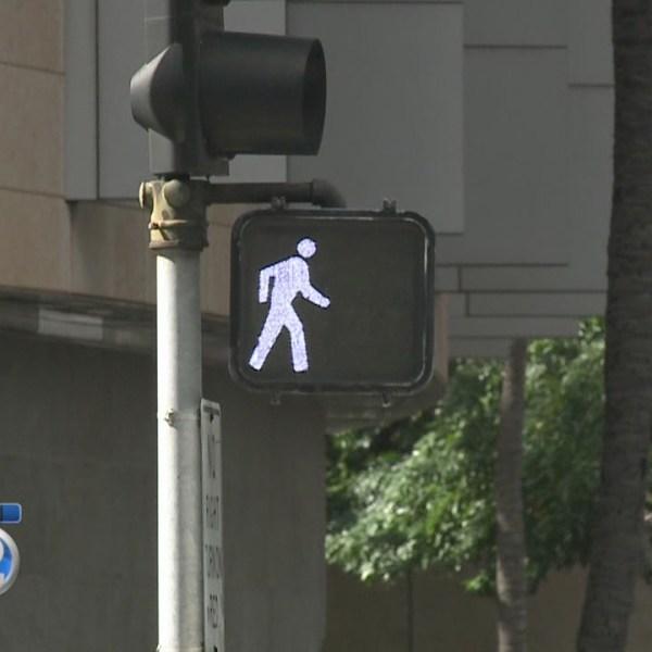Elder advocates to push for pedestrian safety improvements in 2016