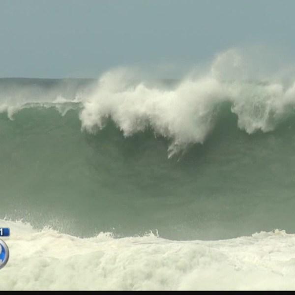 Surfers on 'green alert' for Eddie Aikau Big Wave Invitational