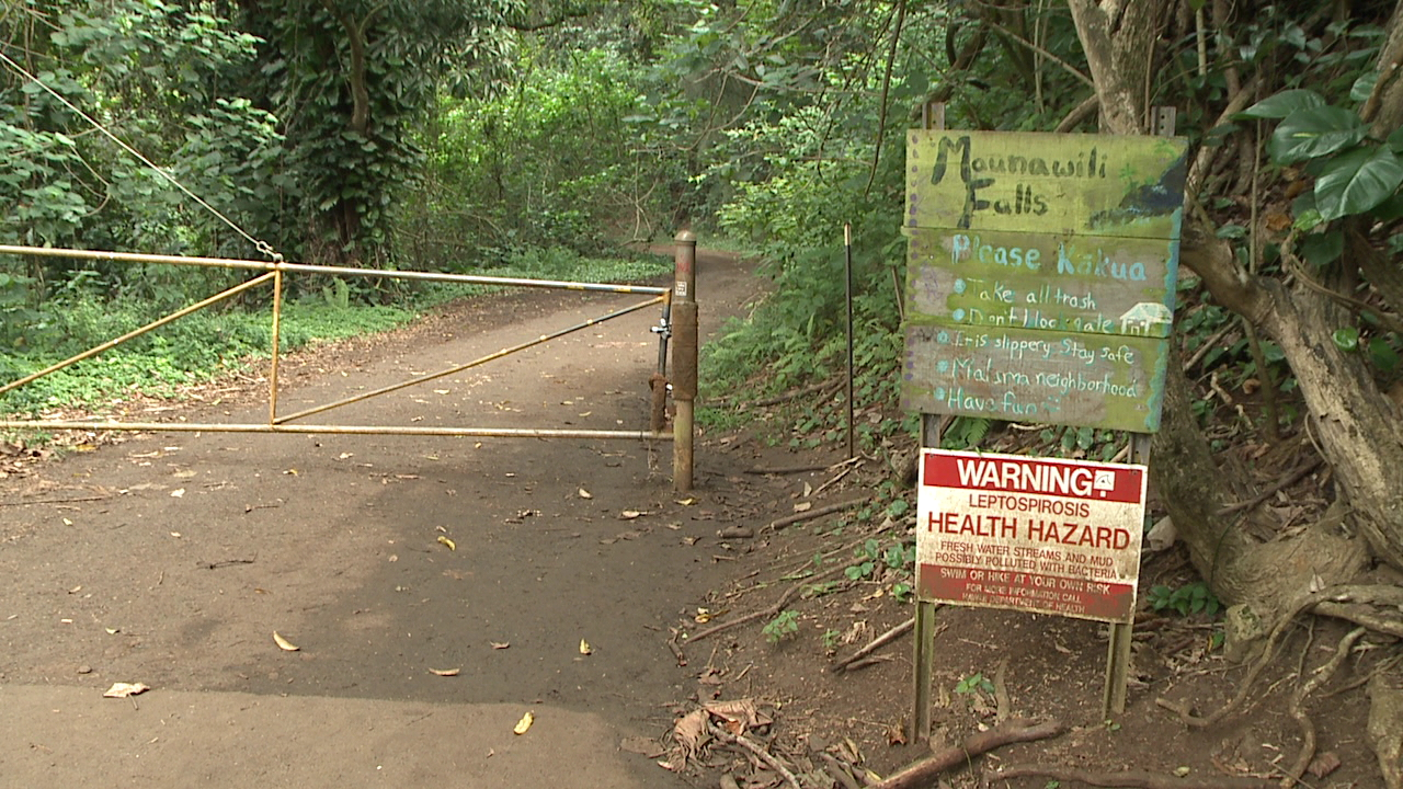 Woman hospitalized after jumping about 50 feet from Maunawili Falls