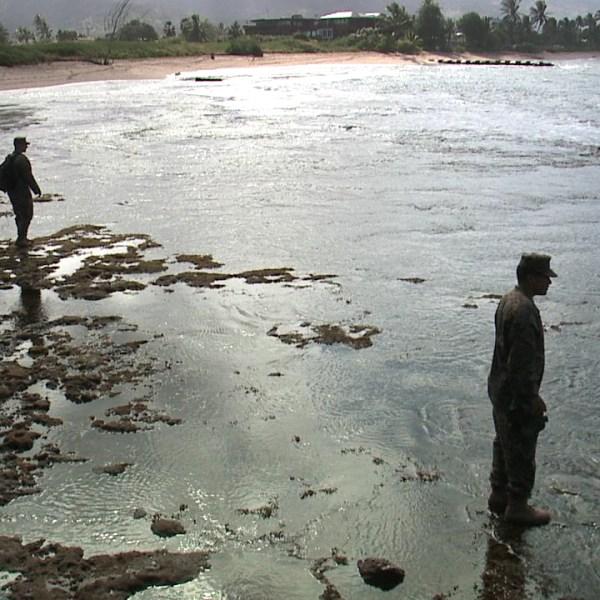 north shore marines search_139247