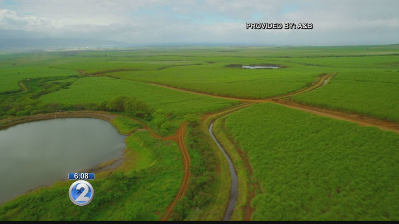 Farmers request restoration of Maui waters