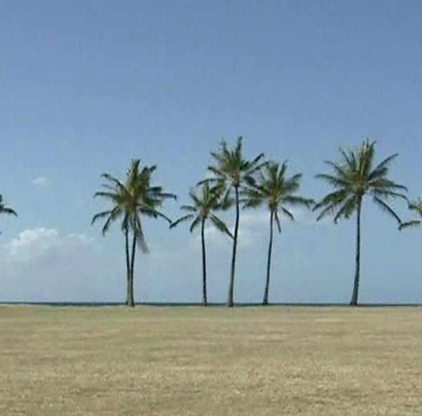 nanakuli beach park_149471