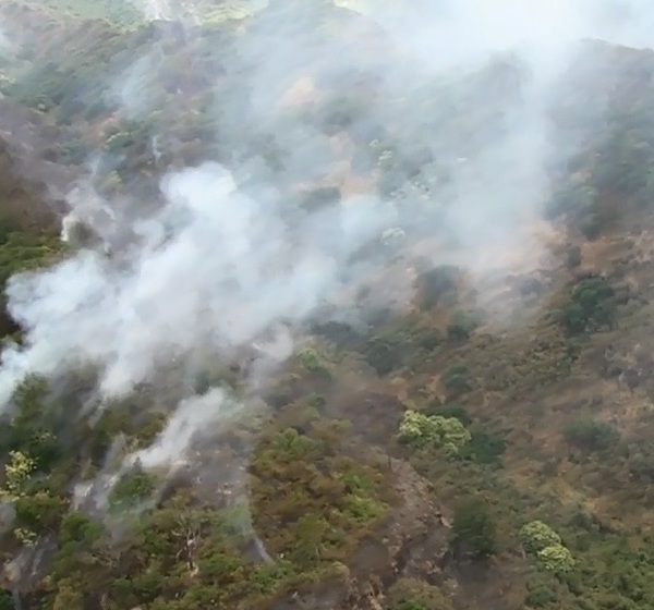 nanakuli brush fire sunday march 20 DLNR-4_148675