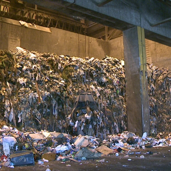 trash recycling_146075