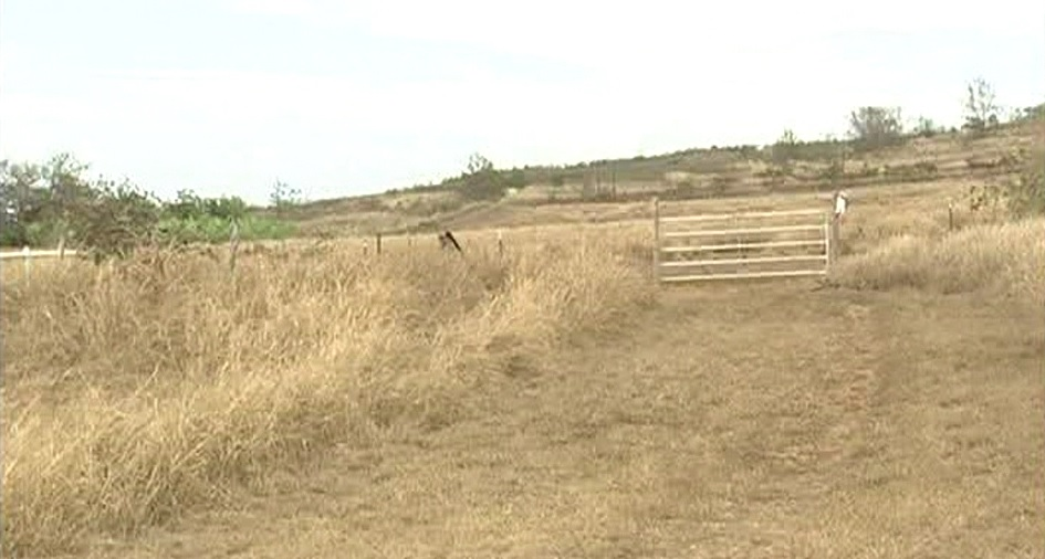Drought conditions hurting farmers and increasing chance of wildfires