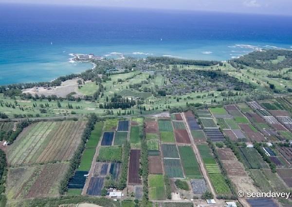 turtle bay conservation lands-1_150842