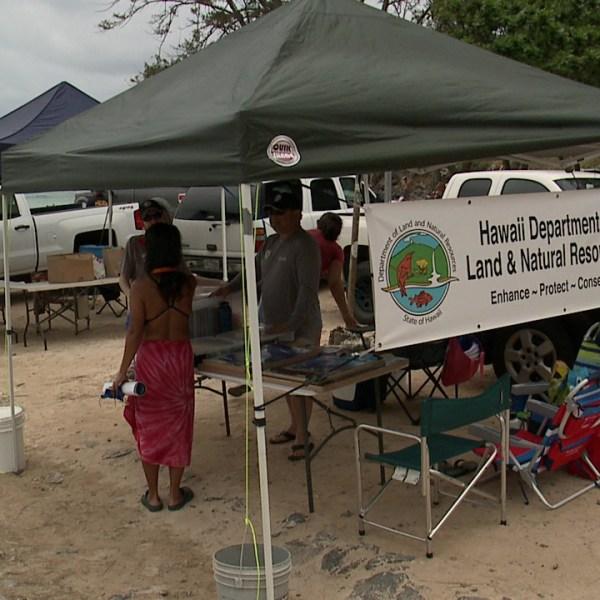 DLNR beach safety_155025