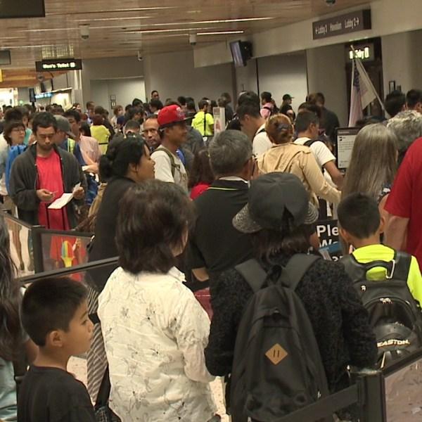 honolulu airport tsa line_159452