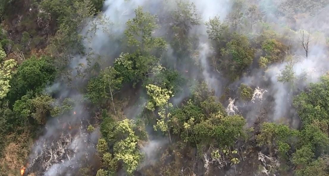 nanakuli brush fire sunday march 20 DLNR-5_148676