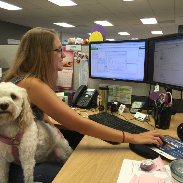 take your dog to work day_163514