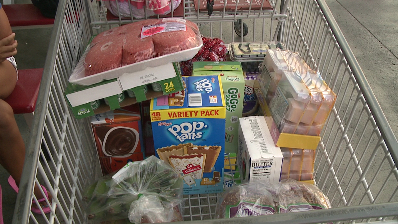 costco shopping cart_163061