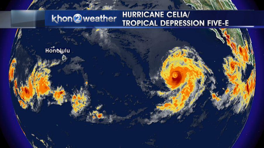 CELIA AND 5-E_165891