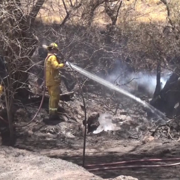 maui brush fire sunday july 3_164730