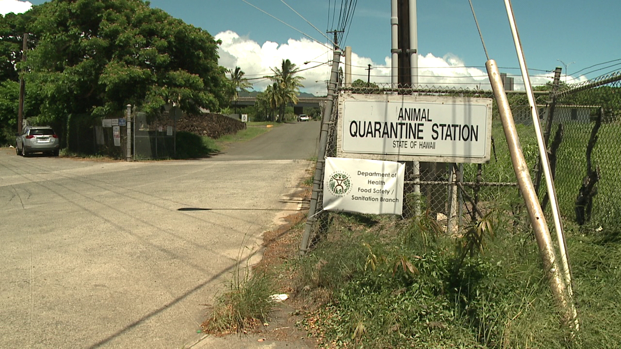 animal quarantine station_170670