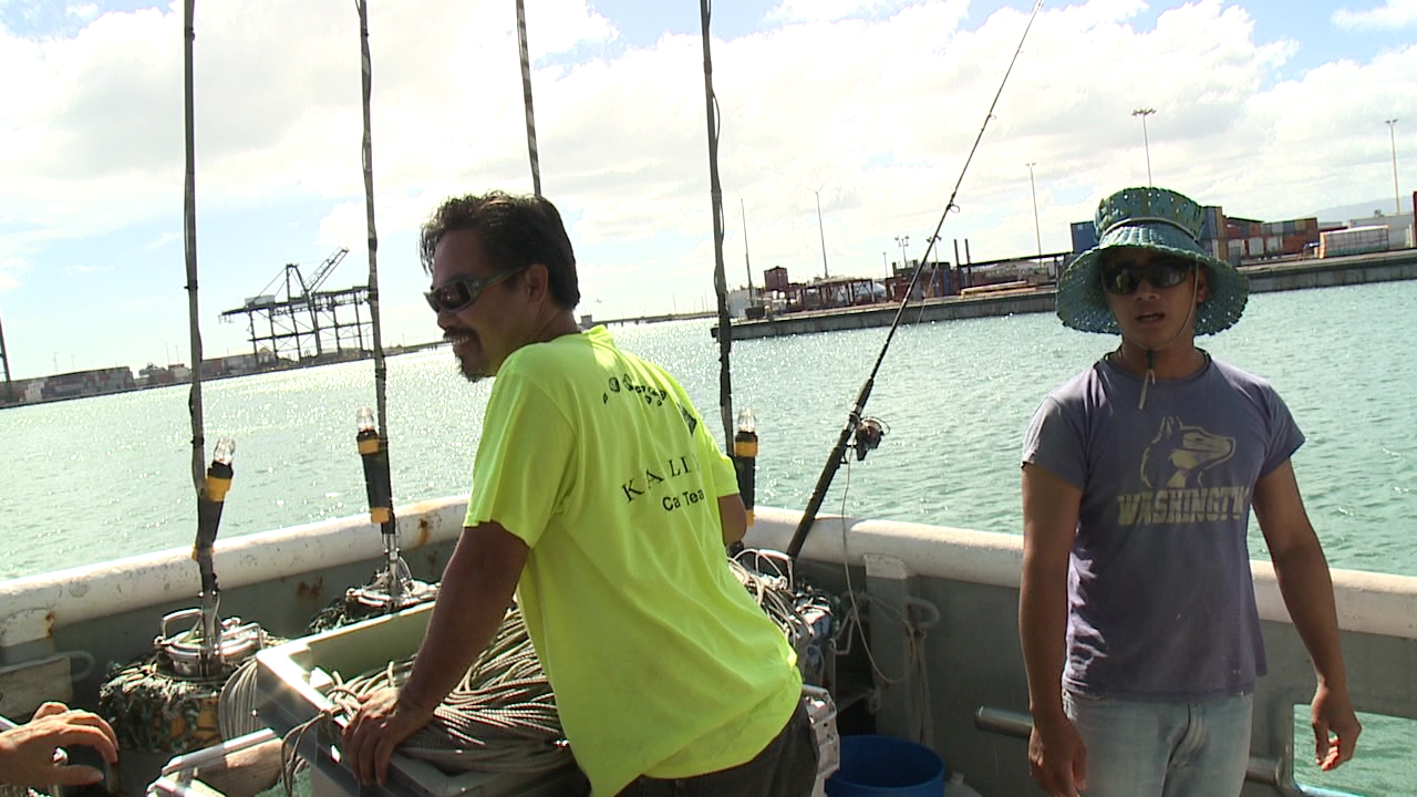 longline-fishermen-honolulu-always-investigating_175929