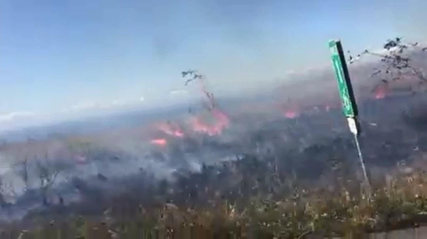 big-island-brush-fire-andrea-gutierrez-2_179809