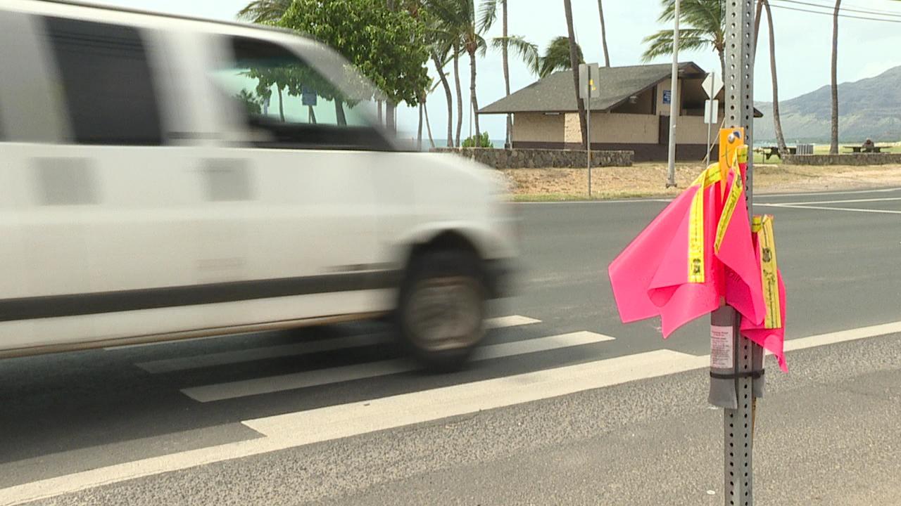 leeward-oahu-nanakuli-pedestrian-flags_178036