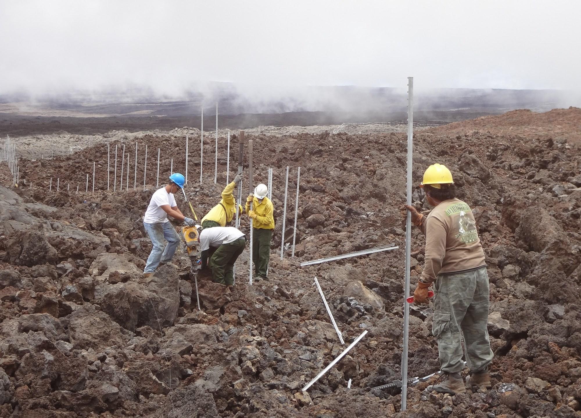 nps-crew-working-on-cat-proof-fence-in-lava-fields_181514