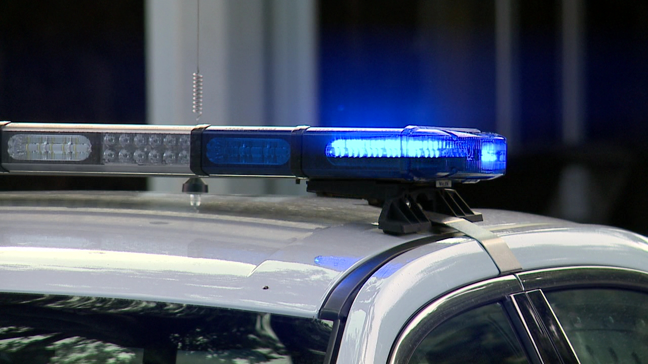 police-car-generic-flashing-lights_178548